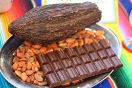 какао бобы в алматы